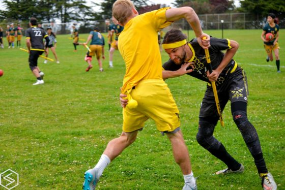 Fantasy Quidditch Weekly Rankings: 18 JUNE 2016